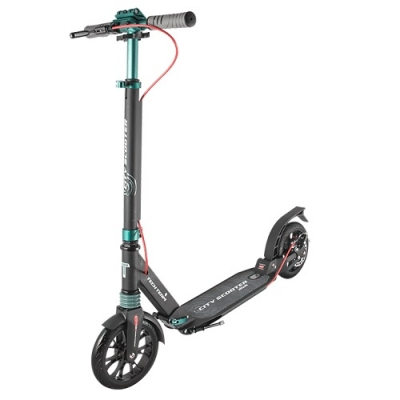 Самокат TT City Scooter Disk /зеленый/